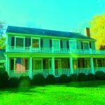 5 Energy Saving Tips for a Greener Home