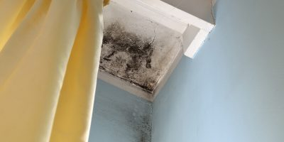Spring Cleaning – Get Rid of Mold